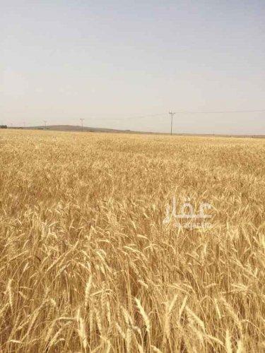 مزرعة للبيع في الفوارة _بريدة