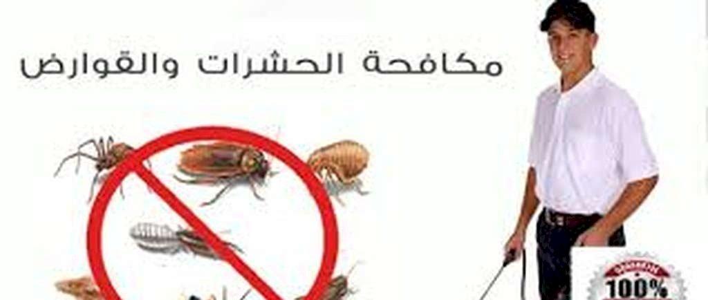 شركة مكافحة حشرات بالرياض شركة شام